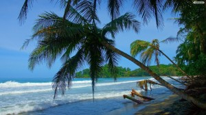 tropical-beach-landscape-wallpaper